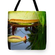 Two Victoria Water Lilypads Tote Bag