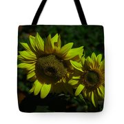 Two Yellow Beauties  Tote Bag