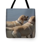 Two Yellow Labs Wait In Anticipation Tote Bag