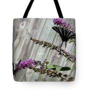Two Zebra Swallowtail Butterflies Tote Bag