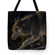 Twords The Sunrise Tote Bag