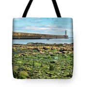 Tynemouth Pier Landscape In Color 2 Tote Bag