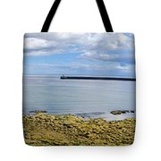 Tynemouth Piers And Lighthouses Panorama Tote Bag