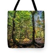 U Shaped Trees Cascade Mountain Ny New York Tote Bag