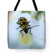 Beauty And The Bug Tote Bag