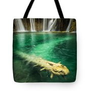 Ultimate Piece Of Mind Tote Bag