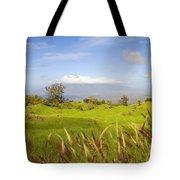 Ulupalakua Landscape Tote Bag