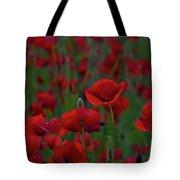 Umbria  Poppies 2 Tote Bag