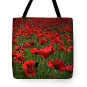 Umbria  Poppies 3 Tote Bag