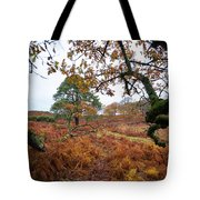 Under A Tree Tote Bag