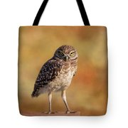 Under A Watchful Eye Tote Bag