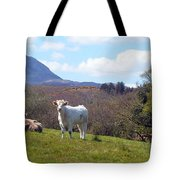 Under Muckish ,donegal  Tote Bag