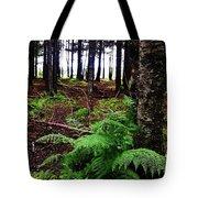 Under The Alaskan Trees Tote Bag