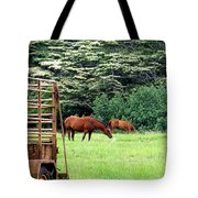 Under The Albesias Tote Bag