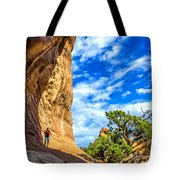 Under The Arch Tote Bag