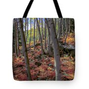 Under The Aspens Tote Bag