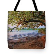 Under The Mangroves Tote Bag