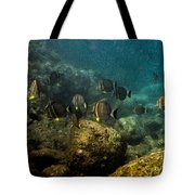 Under The Sea Scape Tote Bag