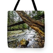 Under The Swinging Bridge Tote Bag