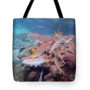 Under Water Fiji Tote Bag