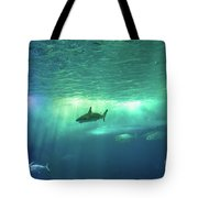 Undersea Scene Background Tote Bag