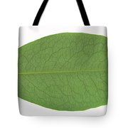 Underside Of A Coca Leaf, Erythroxylon Tote Bag