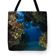 Underwater Crevice Through A Coral Tote Bag