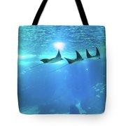 Underwater Manta Background Tote Bag