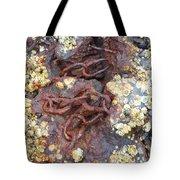 Underwater Treasure Tote Bag