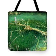Underwater Tree Tote Bag