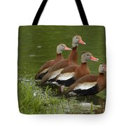 Unexpected Visitors Tote Bag