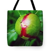 Unexploded Peony Tote Bag