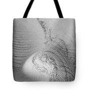 Unfolding And Enfolding -- Vi Tote Bag
