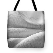 Unfolding And Enfolding - IIi Tote Bag
