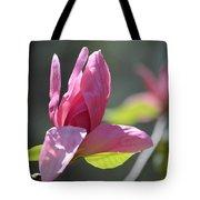Unfolding - Star Magnolia Tote Bag