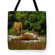 Unimaginable Joy Tote Bag