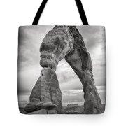 Unique Delicate Arch Tote Bag by Adam Romanowicz