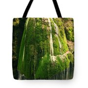 Unique Famous Amazing Bigar Waterfall Tote Bag