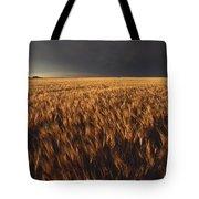 United States, Kansas, Summer Thunder Tote Bag