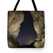 Universal View Tote Bag