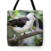 Unknown White Bird On Tree Branch Tote Bag