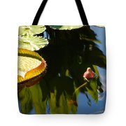 Unopened Water Lily And Reflections Tote Bag