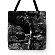 Unrooted Tote Bag