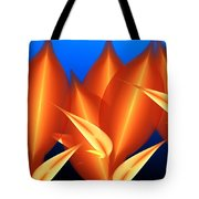 Untitled 01-15-10-c Tote Bag