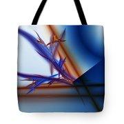 Untitled 04-14-10-e Tote Bag