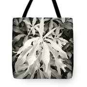 Untitled 20150903 Tote Bag