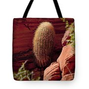 Unusual Locale Tote Bag