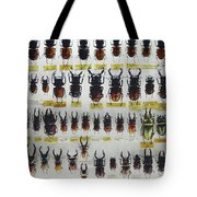 Unusual Pattern Made Out Of Many Stag Beetles Of Different Sizes Tote Bag