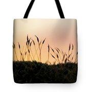 Unusual Sunset Tote Bag