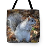 Unusual White And Gray Squirrel Tote Bag